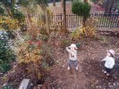 本当?人工芝に発がん性? お庭を人工芝にしようと思ってた私に衝撃